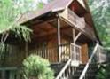 Drewniany dom ze schodami wśród drzew