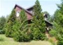 Drewniany dom w ogrodzie. Widok wśród iglaków