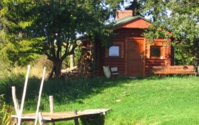 Drewniana sauna wśród drzew, widać kawałek pomostu